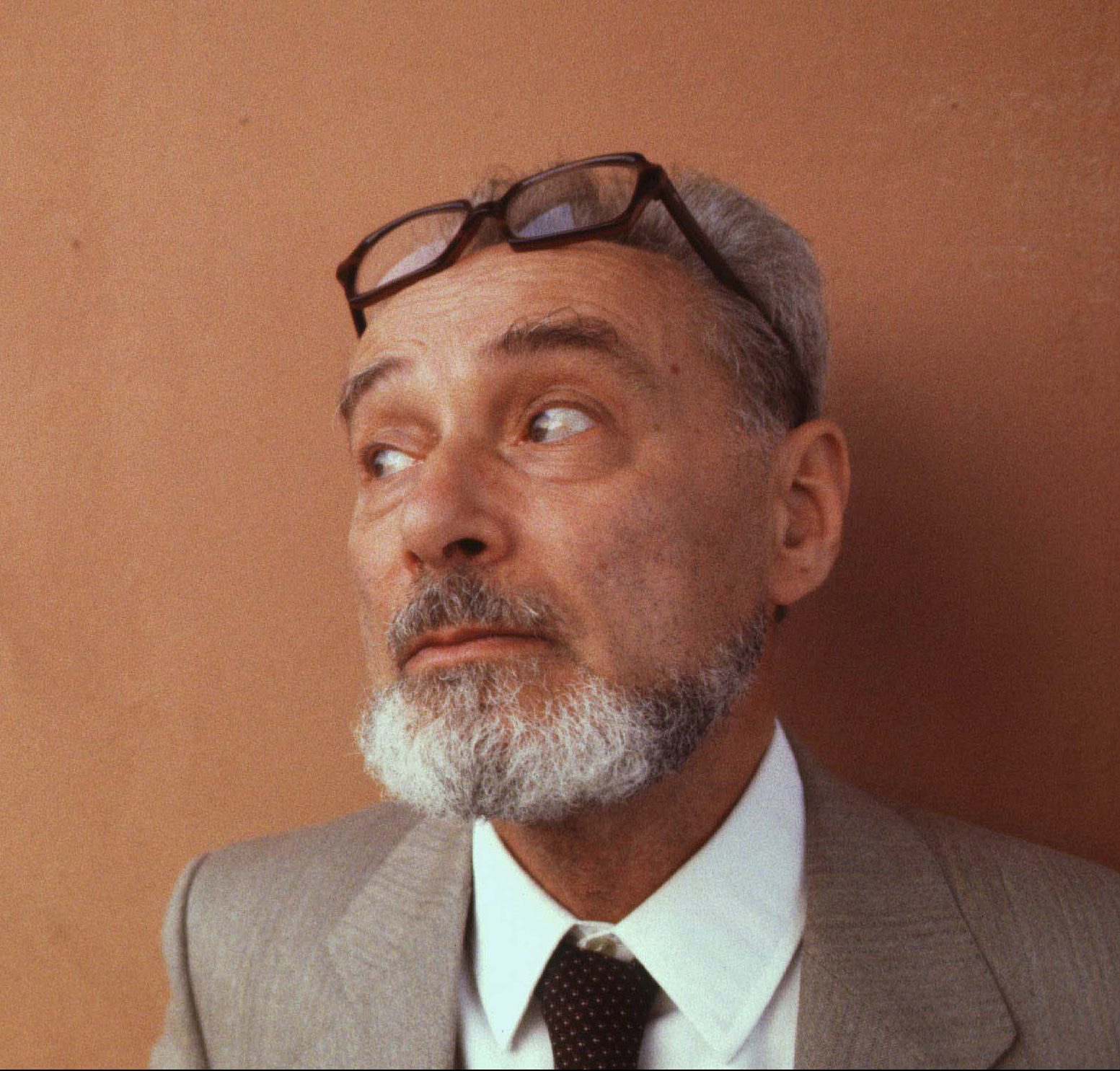 Primo levi memory meaning and the holocaust brooklyn primo levi memory meaning and the holocaust brooklyn institute for social research gamestrikefo Choice Image